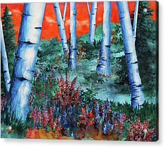 Birch Trees At Sunset Acrylic Print by Curtiss Shaffer
