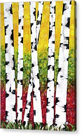 Acrylic Print featuring the mixed media Birch Forest Trees by Christina Rollo