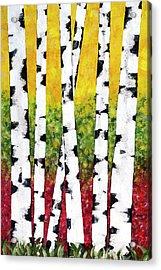 Birch Forest Trees Acrylic Print