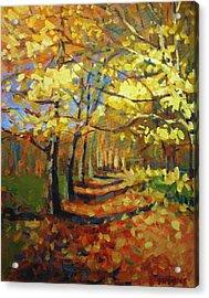Birch2 Acrylic Print by Brian Simons