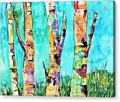 Watercolor Painting Of Birched Trees  Acrylic Print
