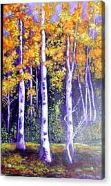 Birches In Canadian Fall Acrylic Print
