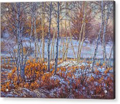 Birches In First Snow Acrylic Print