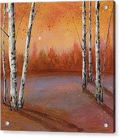 Birches In The Fall Acrylic Print