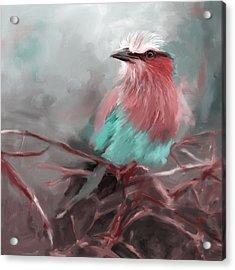 Bird 4 657 3 Acrylic Print