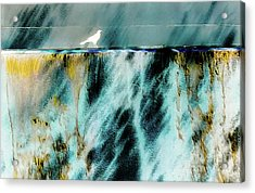 Acrylic Print featuring the photograph Bird At The Abstract Fountain by D Davila