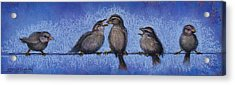 Bird Babies On A Wire Acrylic Print by Susan Jenkins