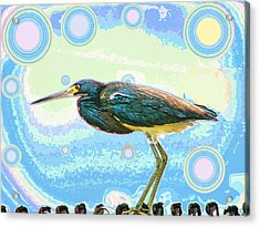Bird Contemplates The Cosmos Acrylic Print by Wendy J St Christopher