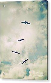 Acrylic Print featuring the photograph Bird Dance by Lyn Randle