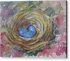 Bird Eggs In Nest Acrylic Print