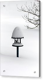 Bird Feeder In Snow Acrylic Print