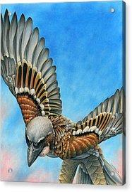 Bird Flight Acrylic Print by Cara Bevan
