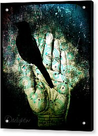 Bird In Hand Acrylic Print