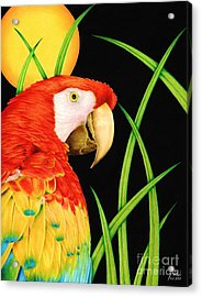 Bird In Paradise Acrylic Print by Sheryl Unwin
