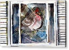 Bird Acrylic Print by Mindy Newman