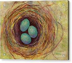 Bird Nest Acrylic Print