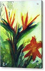 Bird Of Paradise, #177 Acrylic Print by Donald k Hall