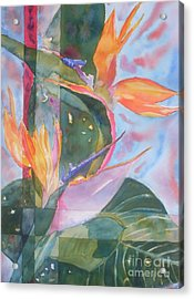 Bird Of Paradise Abstract Acrylic Print by Warren Thompson