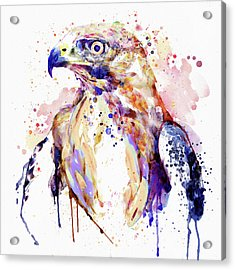 Bird Of Prey  Acrylic Print by Marian Voicu