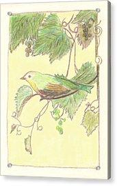 Bird On A Branch Acrylic Print