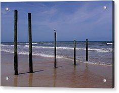 Bird On One Of Five Poles In Daytona Beach Florida Acrylic Print