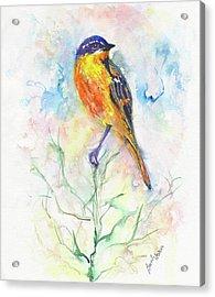 Bird Sentinel Acrylic Print by Beverly Bronson