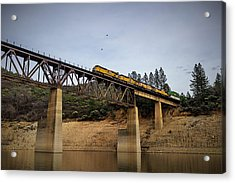Bird Vs Train Acrylic Print