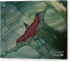 birdEYE volcano III Acrylic Print