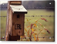 Birdhouse - 1 Acrylic Print by Randy Muir