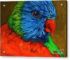 Birdie Birdie Acrylic Print by Alison Caltrider