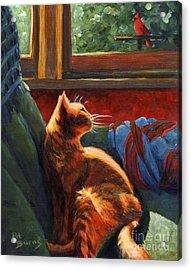Birdie In The Window Acrylic Print by Pat Burns