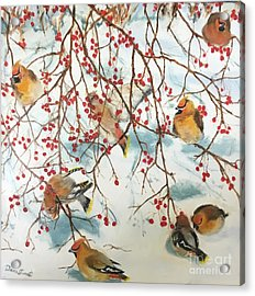 Birds And Berries Acrylic Print