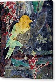 Birds And Butterflies Acrylic Print