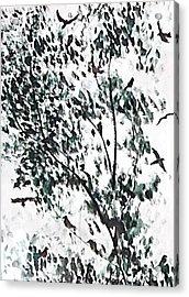 Birds At Sundown I Acrylic Print by Caroline  Urbania Naeem