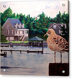Acrylic Print featuring the painting Birds Eye View by Jim Phillips