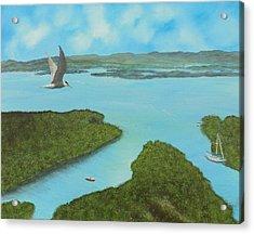 Birds Eye View Acrylic Print by Tony Rodriguez