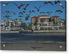 Birds Flight From The Right Of Passage Acrylic Print by Kenneth James