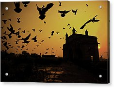 Birds In Flight At Gateway Of India Acrylic Print by Photograph by Jayati Saha