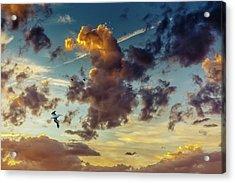 Birds In Flight At Sunset Acrylic Print