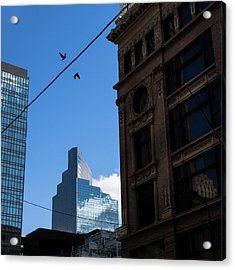 Acrylic Print featuring the photograph Birds In Flight by Whitney Leigh Carlson
