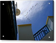 Birds In Formation Over The Boardwalk At Daytona Beach Florida Acrylic Print