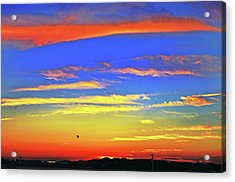 Birds In Nantucket Sunset From Eat Fire Spring Acrylic Print by Duncan Pearson