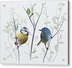 Acrylic Print featuring the painting Birds In Tree by Ivana