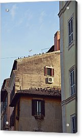 Birds Of A Feather Acrylic Print by JAMART Photography