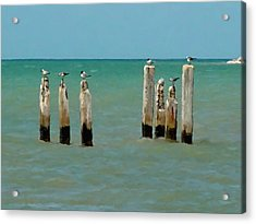 Birds On Sticks Acrylic Print