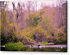 Acrylic Print featuring the photograph Birds Playing In The Pond 1 by Madeline Ellis