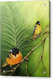 On The Lookout, Birds  Acrylic Print