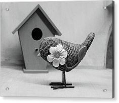 Birdsong Acrylic Print