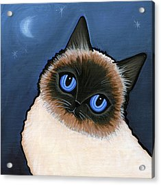 Birman Blue Night Acrylic Print by Leanne Wilkes