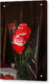 Acrylic Print featuring the photograph Birthday Roses by Vadim Levin